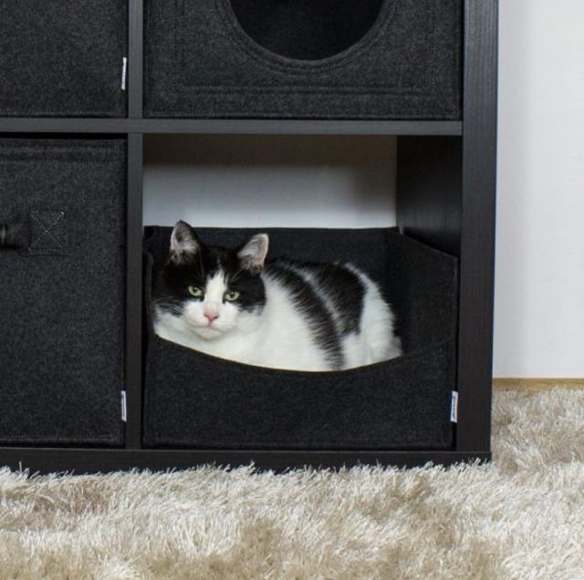 Katzenbett für Ikea Kallax2