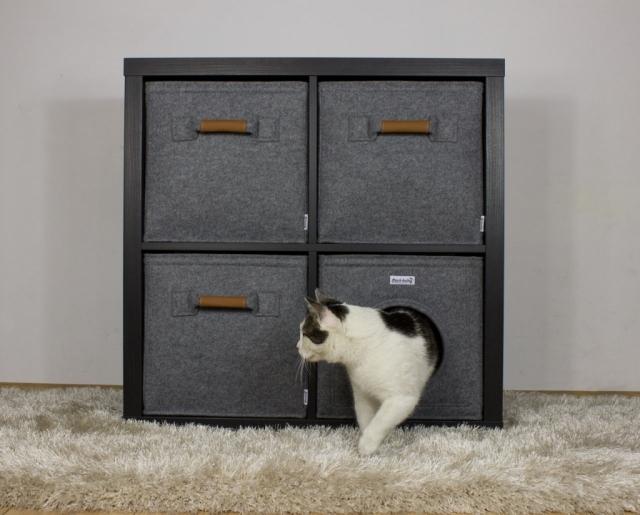 Katzenhöhle Kallax