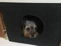 Hundehöhle aus Filz Maßanfertigung für jedes Regalfach