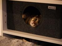 Katzenhöhle aus Filz als Maßanfertigung