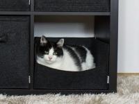 Katzenbett passend für Ikea Kallax